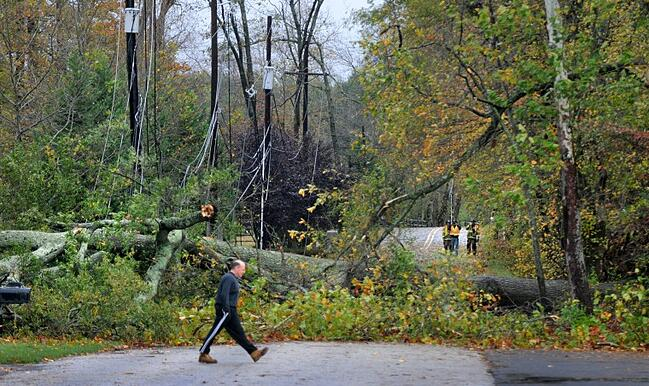 Downed trees in Southampton, PA post Superstorm Sandy