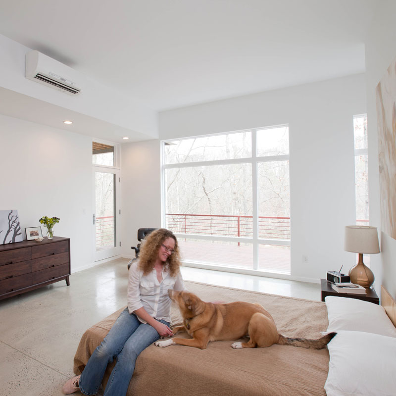 Ductless_Dog_Lady.jpg
